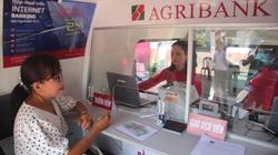 Agribank Phú Yên: Khai trương điểm giao dịch lưu động thứ hai bằng ô tô chuyên dùng