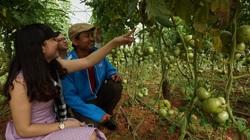 Nông nghiệp Thủ đô tăng trưởng 1,61%