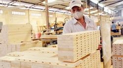 Thành lập đoàn kiểm tra áp dụng mã HS đối với nhóm các mặt hàng gỗ cao su xuất khẩu