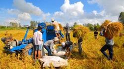EVFTA sẽ khiến tất cả hàng nông, lâm, thủy sản đều hưởng lợi