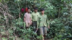 Chiềng Ve làm tốt công tác bảo vệ rừng