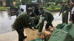 Lạng Sơn: Bắt giữ 90.000 khẩu trang và 450kg nầm lợn nhập lậu