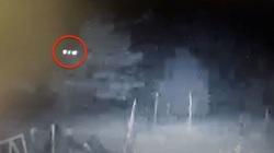 Phát hiện người ngoài hành tinh đang cho gà ăn trong đêm
