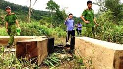 Gia Lai: Phục hồi điều tra vụ mất rừng gây thiệt hại ngân sách 12 tỷ đồng