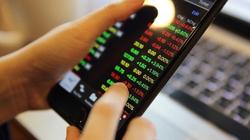 Lượng tài khoản chứng khoán nội mở mới 'hạ nhiệt'