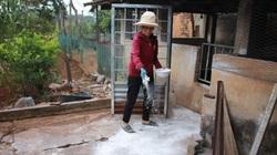 """Đắk Lắk: Vừa tái đàn 1 ngày lợn đã ốm chết, huyện công bố dịch tả lợn châu Phi """"tái xuất"""""""