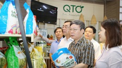 Gạo hữu cơ 'vô cùng sạch' của Quảng Trị bước ra thị trường