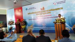 """Nhu cầu cuối năm tăng, cộng EVFTA """"chắp cánh"""", tôm Việt thẳng tiến sang EU"""
