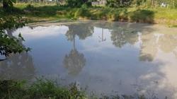 5 đứa trẻ tử vong do đuối nước ở An Giang có hoàn cảnh gia đình rất khó khăn