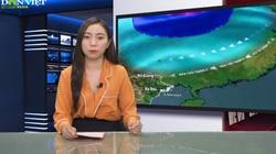 Bản tin Thời sự Dân Việt ngày 14/9: Tin bão xa và đợt không khí lạnh có thể gây mưa to kèm giông lốc