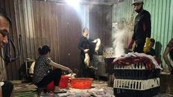 Giá gia cầm hôm nay 16/9: Lò miền Nam đổ xô mua vịt thịt, gà lông trắng đứng giá