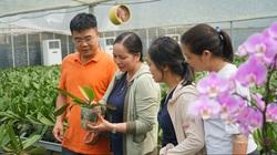 Hà Nội: Hơn 96% số dân Thanh Oai hài lòng với xây dựng nông thôn mới