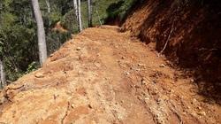 Lâm Đồng: Mở đường dân sinh trái phép trên đất rừng