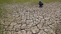 Vì sao Thủ tướng chỉ đạo ứng phó hạn hán, xâm nhập mặn ngay trong mùa lũ?
