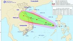 Biển Đông đón bão số 5, giật cấp 12, tàu thuyền cẩn trọng với gió mạnh