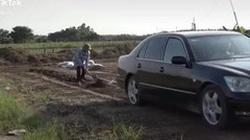 """Nông dân """"sành điệu"""" dùng xe Lexus LS thay trâu đi cày ruộng"""