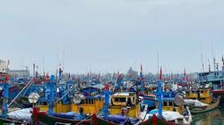 Bão số 5: Dừng hoạt động tuyến Lý Sơn, cấm tàu thuyền ra khơi