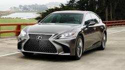 Cục đăng kiểm VN phê duyệt gấp Chương trình triệu hồi gần 800 xe của Lexus