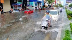 Đà Nẵng: Đường ngập, cây gãy đổ đè nhà dân do ảnh hưởng bão số 5