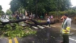 Đà Nẵng hỗ trợ Thừa Thiên Huế khắc phục hậu quả bão số 5