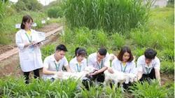 Tiêu chí nào được xét tuyển thẳng vào Học viện Nông nghiệp Việt Nam?