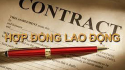 Từ 2021, được ký hợp đồng lao động xác định thời hạn nhiều lần với người nước ngoài