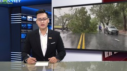 Bản tin Thời sự Dân Việt ngày 18/9: Hàng nghìn ngôi nhà bị tốc mái, hư hỏng nặng vì cơn bão số 5