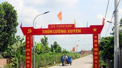 Huyện cuối cùng của Hà Nam về đích nông thôn mới: Lý Nhân và sức bật từ lòng dân