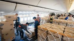 Cách 4 hãng hàng không lớn nhất thế giới có lãi trong mùa dịch