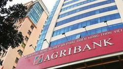 Khẩn trương tăng vốn cho Agribank, BIDV, Vietcombank, VietinBank