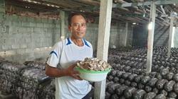 """Ninh Bình: Ông nông dân này trồng thứ nấm gì trong nhà mà mỗi tháng """"hái"""" 50 triệu?"""