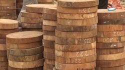 Khai thác gỗ nghiến trái phép ở Điện Biên, máu rừng chảy về xuôi