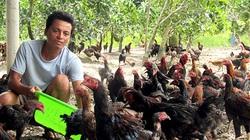 Hậu Giang: Tiếc vườn nhà bỏ hoang, anh nông dân mua gà ta về thả, ai ngờ giờ là tỷ phú