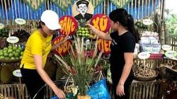 Quảng Nam: Sắp diễn ra hội chợ với quy mô hơn 100 gian hàng