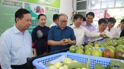Gần 3,8 vạn nông dân tỉnh Hòa Bình đạt danh hiệu sản xuất, kinh doanh giỏi