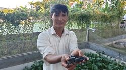 """Nam Định: Nuôi loài bò sát tối ngày chui rúc dưới ao bèo, mỗi năm """"đút túi"""" vài trăm triệu"""