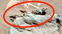 Tìm thấy hóa thạch của người ngoài hành tinh trên sao Hỏa