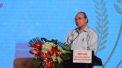 Thủ tướng Nguyễn Xuân Phúc biểu dương Báo NTNN/Dân Việt gánh vác thành công tổ chức Hội nghị đối thoại với Nông dân