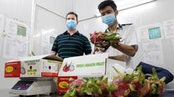 Xuất khẩu trái cây sang Mỹ: Tin vui nối tiếp tin vui