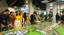 Chính thức khánh thành Khu kinh tế đêm đầu tiên tại thành phố Đồng Xoài