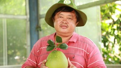 """Bình Phước: Phục sát đất tỷ phú người Nùng trồng bạt ngàn bưởi da xanh, xây được """"biệt phủ"""", sắm xe hơi"""