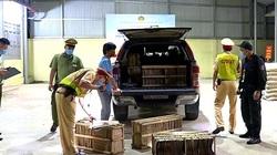 Lạng Sơn: Tiêu hủy 1.000 tờ giấy dính trứng tằm nhập lậu từ Trung Quốc