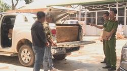 Đắk Lắk: Phát hiện hai giáo viên vận chuyển gỗ lậu