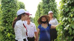 Agribank tiếp sức gìn giữ những đặc sản địa phương