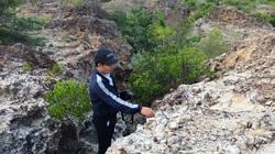"""Bãi san hô cổ """"kỳ lạ"""" ở Ninh Thuận"""