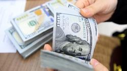 Giá USD dự báo 'lặng sóng' đến hết năm