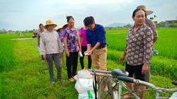 Dạy nghề cho lao động nông thôn: Nâng cao kỹ năng thích ứng và chuyển đổi nghề nghiệp