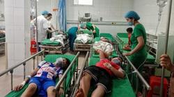 Nghệ An: Chọc tổ ong trong trường, 16 học sinh nhập viện cấp cứu