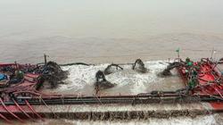 """Khai thác cát sụt lún, sạt lở nghiêm trọng rừng phòng hộ: Xã """"đẩy"""" cho huyện, huyện """"tố"""" lên Sở (Bài 2)"""