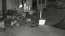 Clip: Cận cảnh cẩu tặc bắt trộm chó bằng dây thòng lọng nhanh như chớp ở tỉnh Bình Thuận